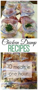 Chicken-Dump-Recipes-10-meals-in-one-hour